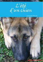 été, chien, adoption, abandon, fourriére, adopter, chiot, chat, chaton, berger-allemand